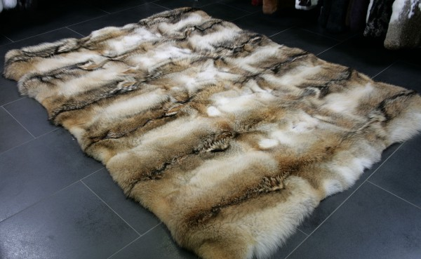 Wilder Pelzteppich aus Kojotenfellen
