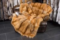 Kanadische Rotfuchsdecke mit Kaninchen Rückabfütterung
