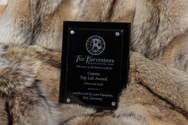 "Kanadische Kojoten Felldecke - ""Top Lot Award"""