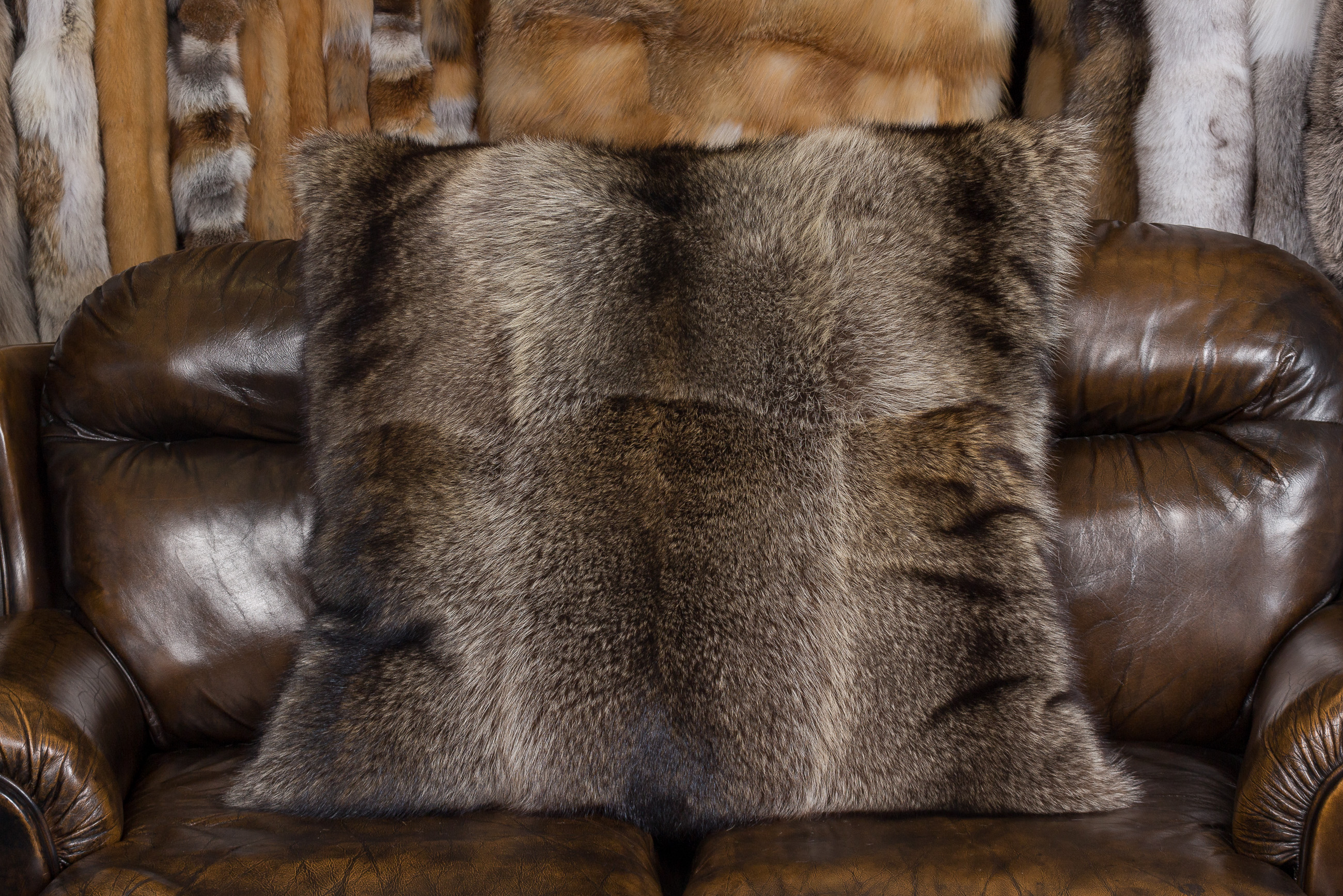 gro es kanadisches waschb r pelzkissen lars paustian in kiel. Black Bedroom Furniture Sets. Home Design Ideas