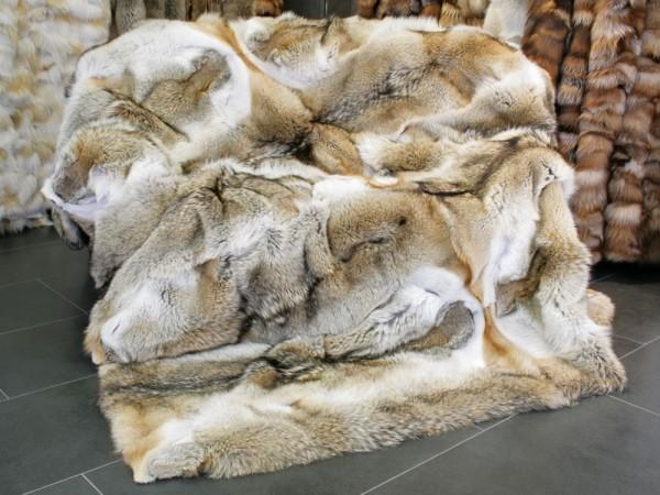 Kanadische Kojoten Pelzdecke naturell (OA-Ware)