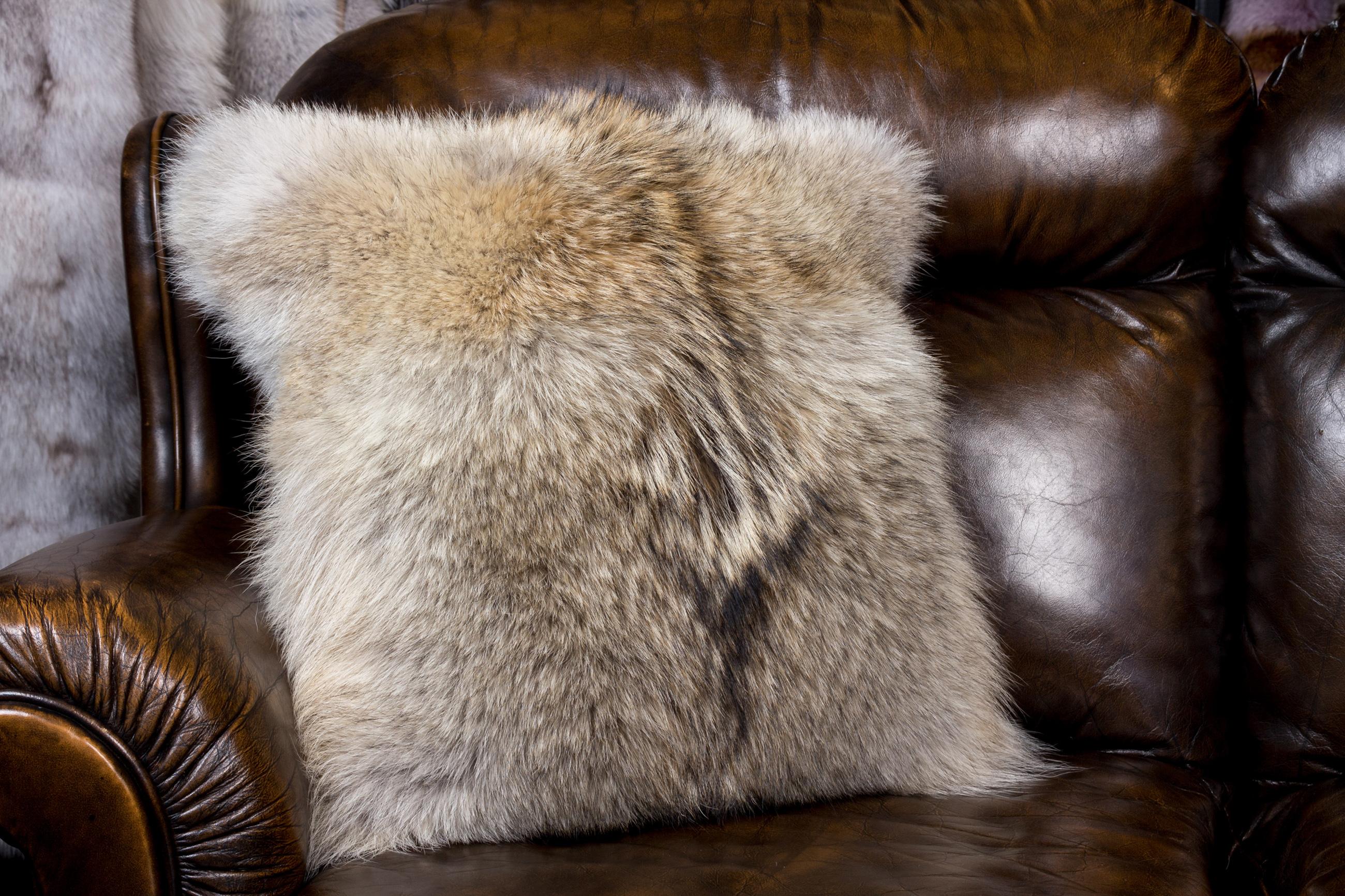 kojoten fellkissen in nafa qualit t lars paustian pelze. Black Bedroom Furniture Sets. Home Design Ideas