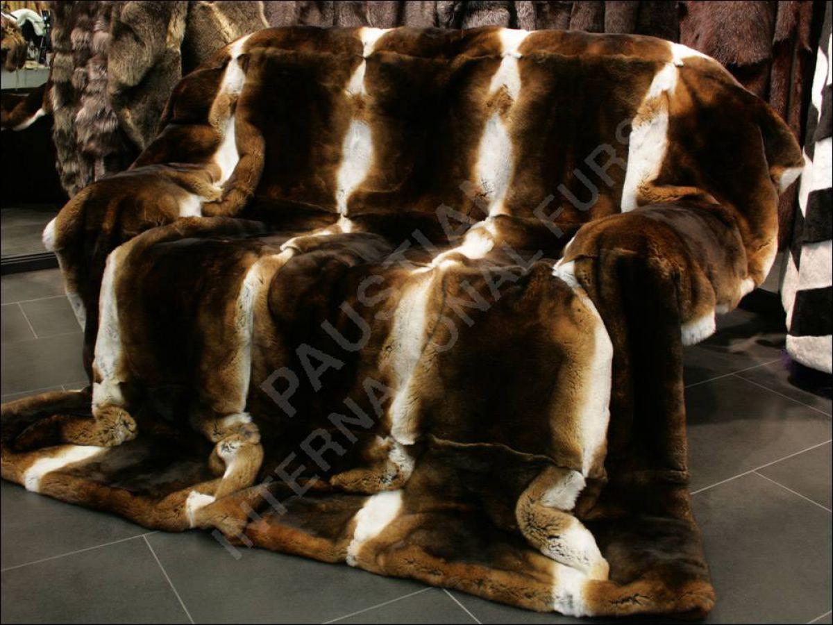 374 castor rexkanin felldecke pelzdecke echt fell. Black Bedroom Furniture Sets. Home Design Ideas